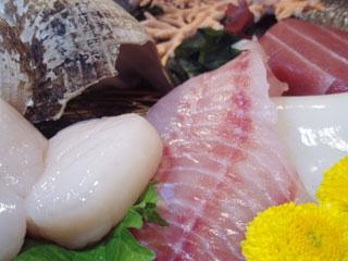 積丹浜料理 第八太洋丸